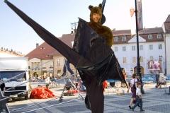 Flying Fox Bats