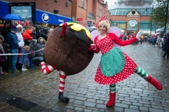 Lairy Fairy & The Christmas Pudding