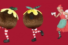 Lairy Fairy & The Christmas Puddings
