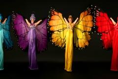 Mariposa - Butterfly stilt walkers