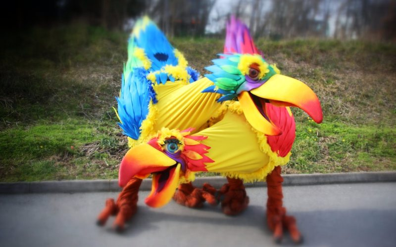 Squawk Birds - Walkabout Characters