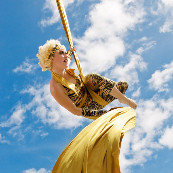 Goldust - World class aerial silks performance