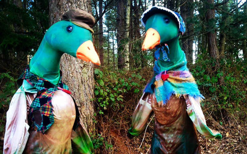 Puddle Ducks - Comedy walkabout characters