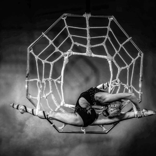 Spider - ground based and aerial contortionist